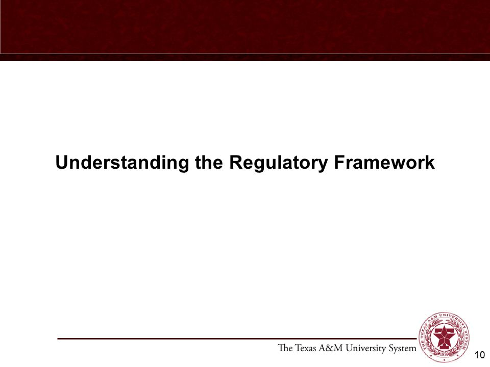 Understanding the Regulatory Framework 10
