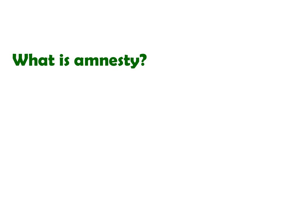 What is amnesty