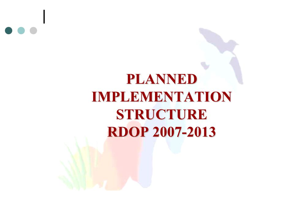 PLANNED IMPLEMENTATION STRUCTURE RDOP 2007-2013