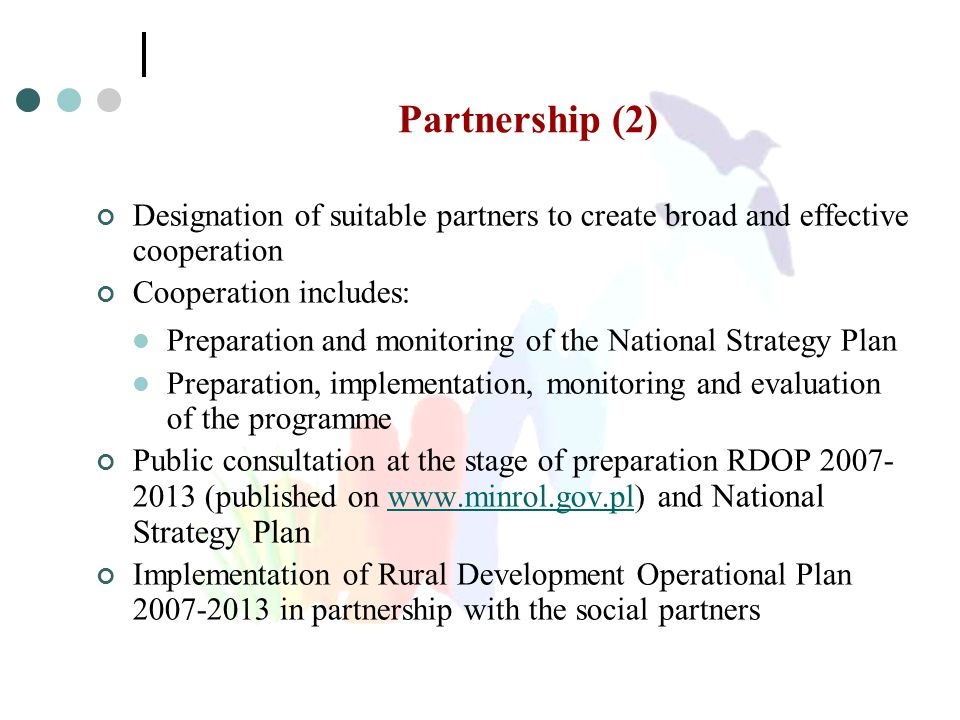 Partnership (2) Designation of suitable partners to create broad and effective cooperation Cooperation includes: Preparation and monitoring of the Nat