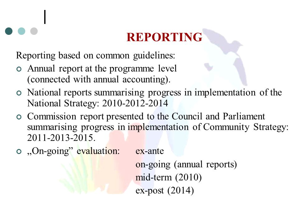 REPORTING Reporting based on common guidelines: Annual report at the programme level (connected with annual accounting). National reports summarising