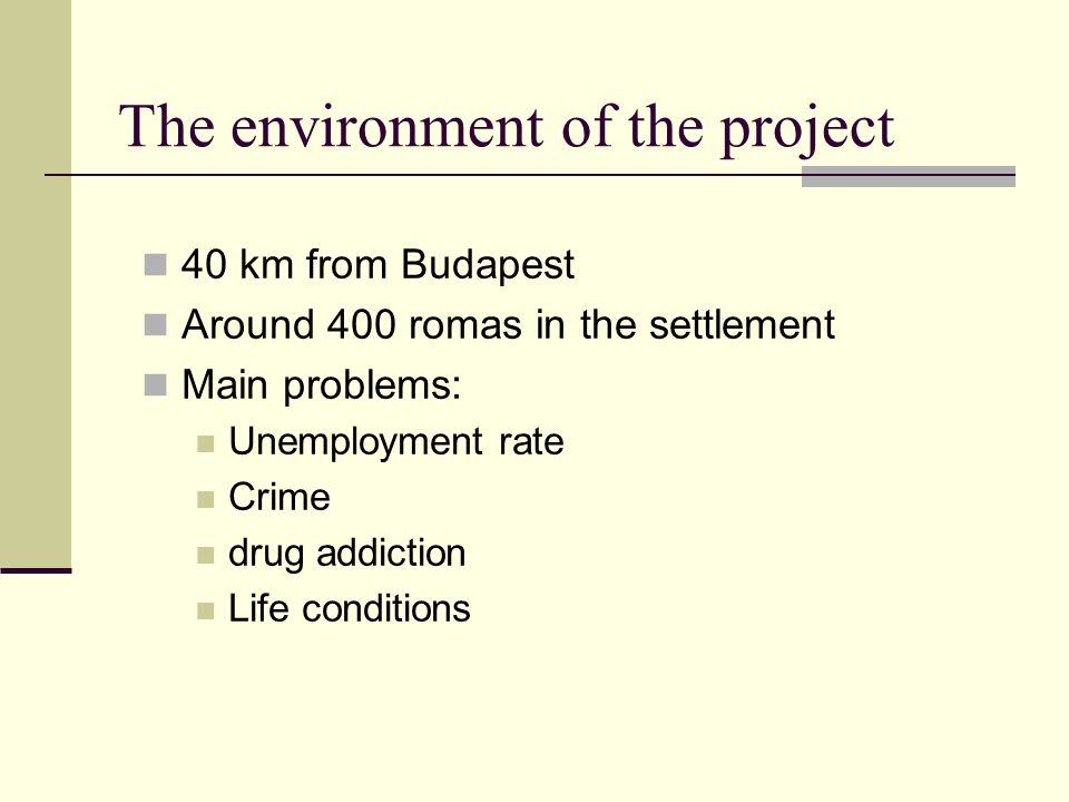 The environment of the project 40 km from Budapest Around 400 romas in the settlement Main problems: Unemployment rate Crime drug addiction Life conditions