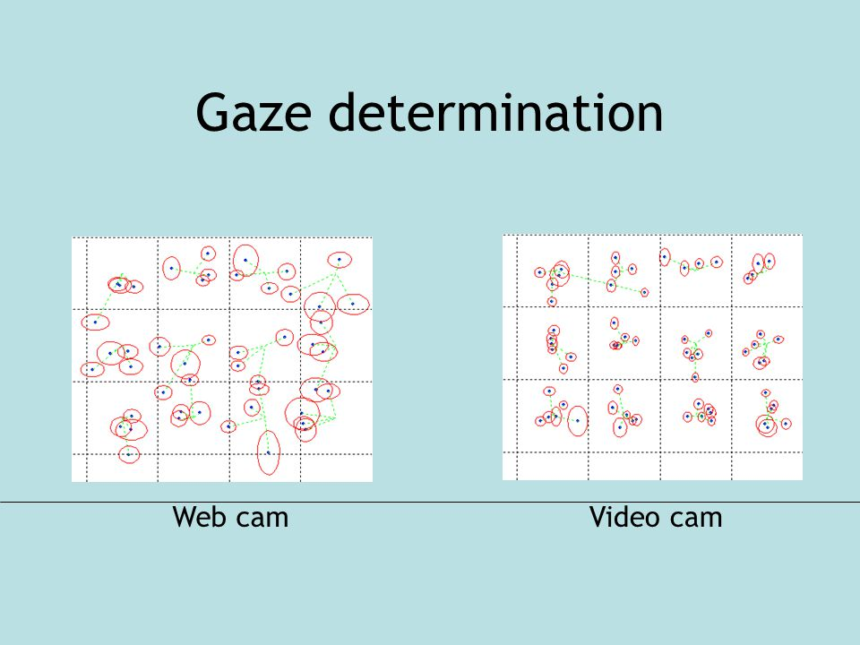 Gaze determination Web camVideo cam