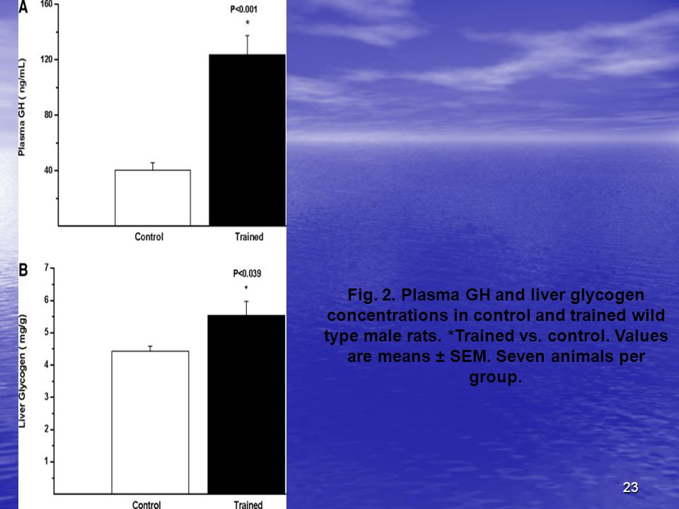 23 Fig. 2. Plasma GH and liver glycogen concentrations in control and trained wild type male rats.