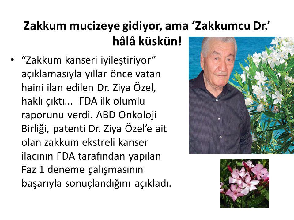 """Zakkum mucizeye gidiyor, ama 'Zakkumcu Dr.' hâlâ küskün! """"Zakkum kanseri iyileştiriyor"""" açıklamasıyla yıllar önce vatan haini ilan edilen Dr. Ziya Öze"""