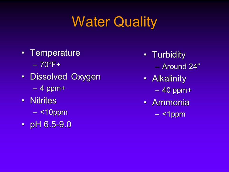 Water Quality TemperatureTemperature –70ºF+ Dissolved OxygenDissolved Oxygen –4 ppm+ NitritesNitrites –<10ppm pH 6.5-9.0pH 6.5-9.0 TurbidityTurbidity –Around 24 AlkalinityAlkalinity –40 ppm+ AmmoniaAmmonia –<1ppm
