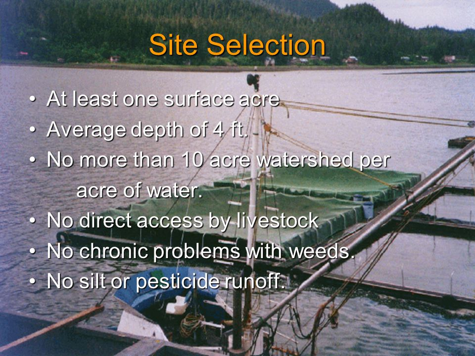 Site Selection At least one surface acreAt least one surface acre Average depth of 4 ft.Average depth of 4 ft.