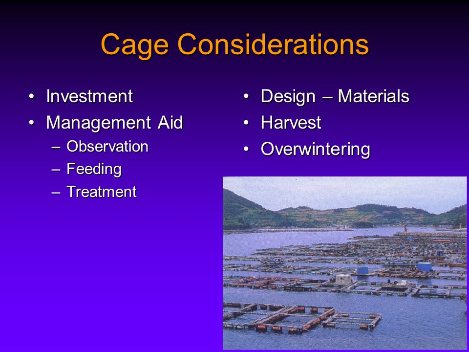 Cage Considerations InvestmentInvestment Management AidManagement Aid –Observation –Feeding –Treatment Design – MaterialsDesign – Materials HarvestHarvest OverwinteringOverwintering