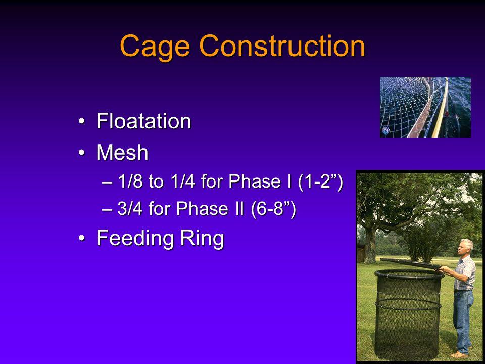 Cage Construction FloatationFloatation MeshMesh –1/8 to 1/4 for Phase I (1-2 ) –3/4 for Phase II (6-8 ) Feeding RingFeeding Ring