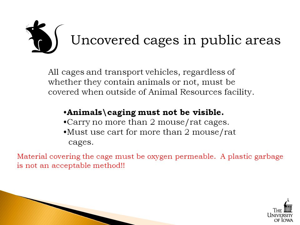 Uncovered cages in public areas All cages and transport vehicles, regardless of whether they contain animals or not, must be covered when outside of Animal Resources facility.