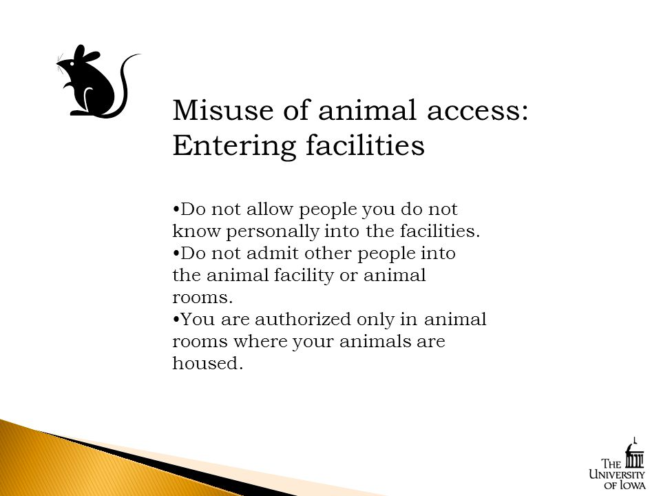 Do not allow people you do not know personally into the facilities.