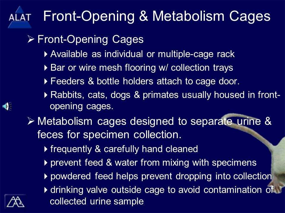 Front-Opening & Metabolism Cages  Front-Opening Cages  Available as individual or multiple-cage rack  Bar or wire mesh flooring w/ collection trays