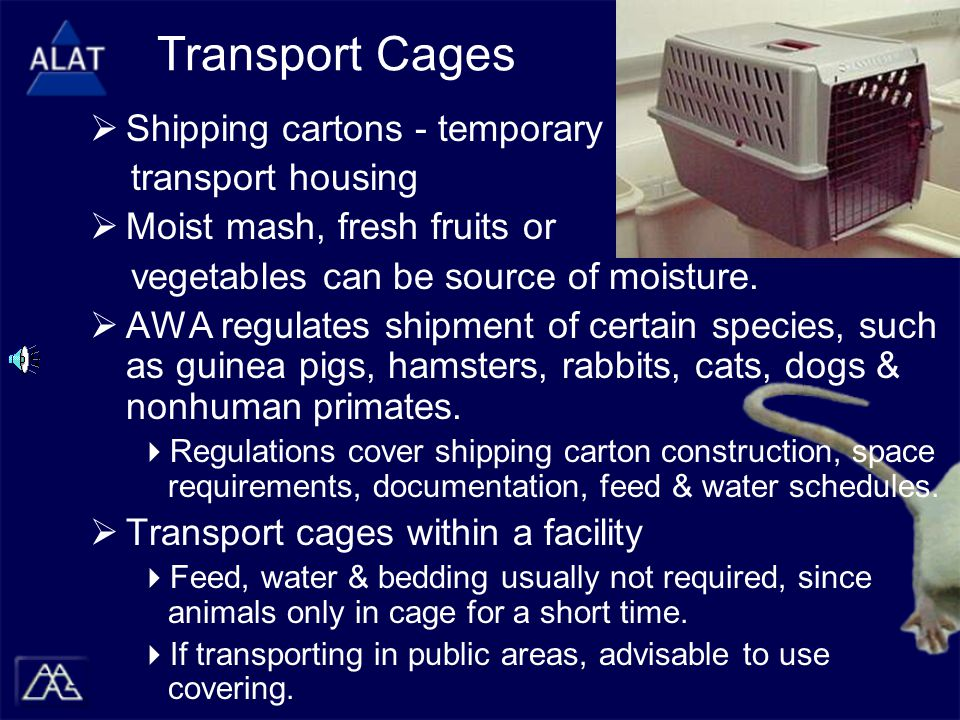 Transport Cages  Shipping cartons - temporary transport housing  Moist mash, fresh fruits or vegetables can be source of moisture.