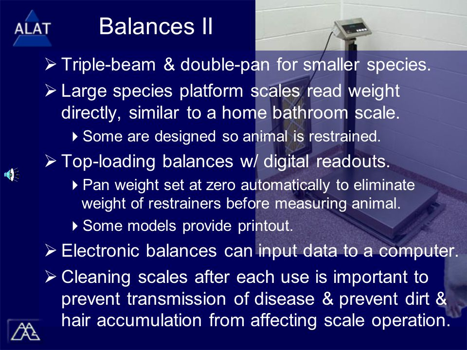Balances II  Triple-beam & double-pan for smaller species.  Large species platform scales read weight directly, similar to a home bathroom scale. 