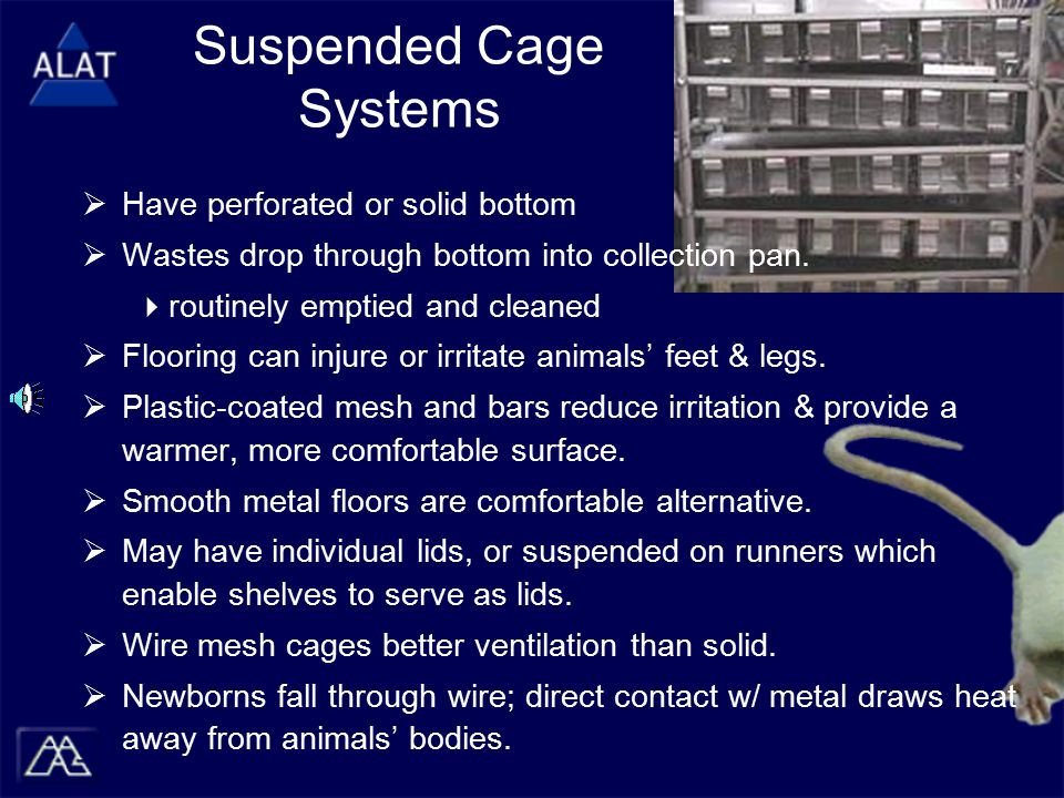 Suspended Cage Systems  Have perforated or solid bottom  Wastes drop through bottom into collection pan.  routinely emptied and cleaned  Flooring