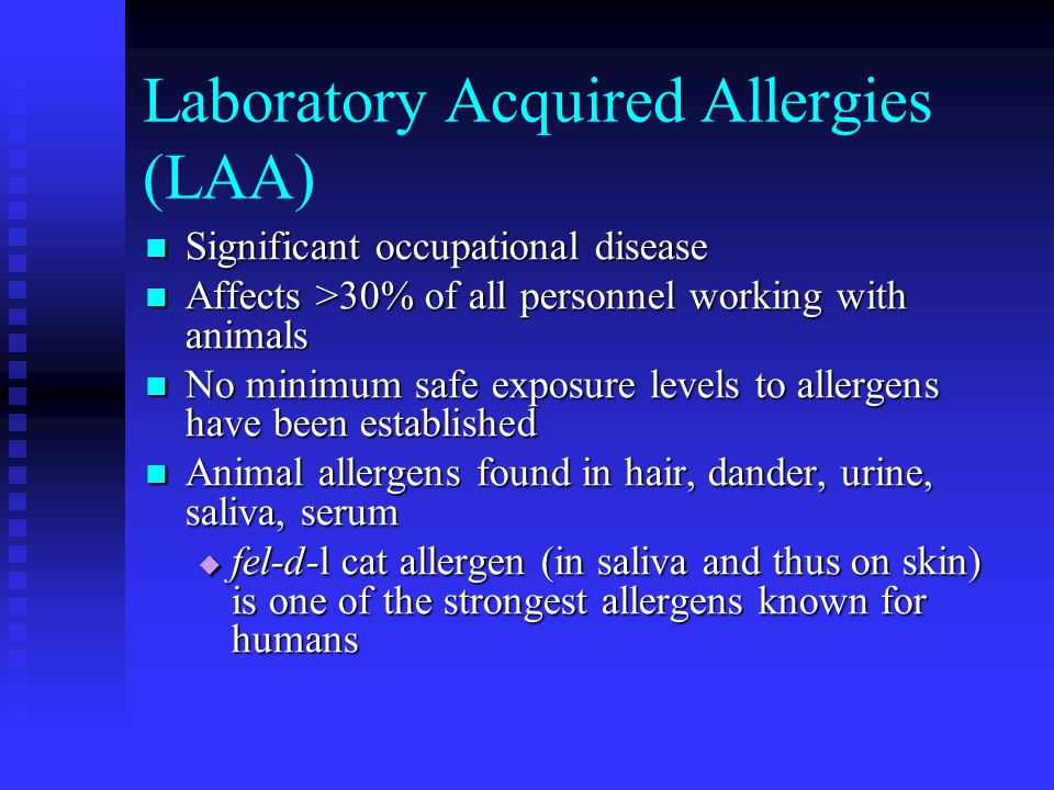 Laboratory Acquired Allergies (LAA) Significant occupational disease Significant occupational disease Affects >30% of all personnel working with animals Affects >30% of all personnel working with animals No minimum safe exposure levels to allergens have been established No minimum safe exposure levels to allergens have been established Animal allergens found in hair, dander, urine, saliva, serum Animal allergens found in hair, dander, urine, saliva, serum  fel-d-l cat allergen (in saliva and thus on skin) is one of the strongest allergens known for humans