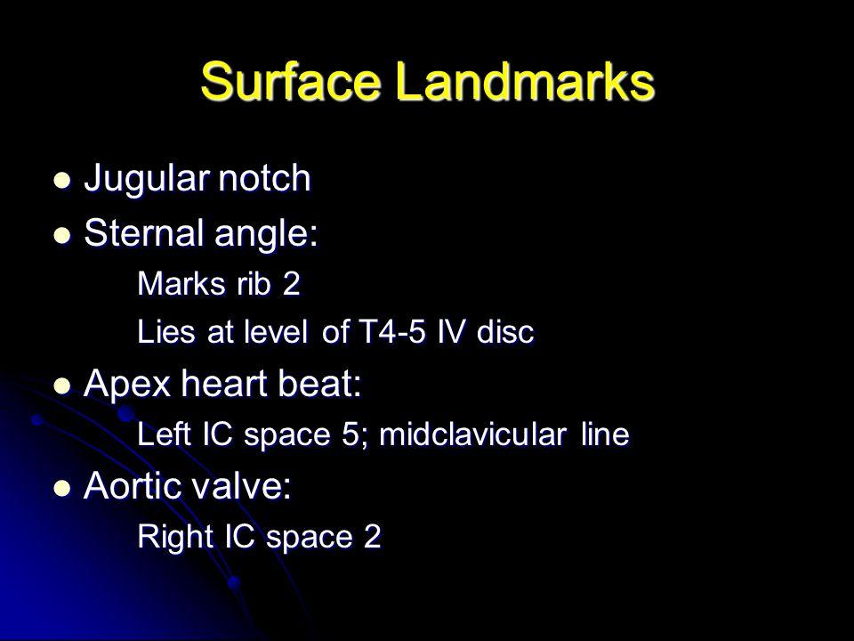Surface Landmarks Jugular notch Jugular notch Sternal angle: Sternal angle: Marks rib 2 Lies at level of T4-5 IV disc Apex heart beat: Apex heart beat