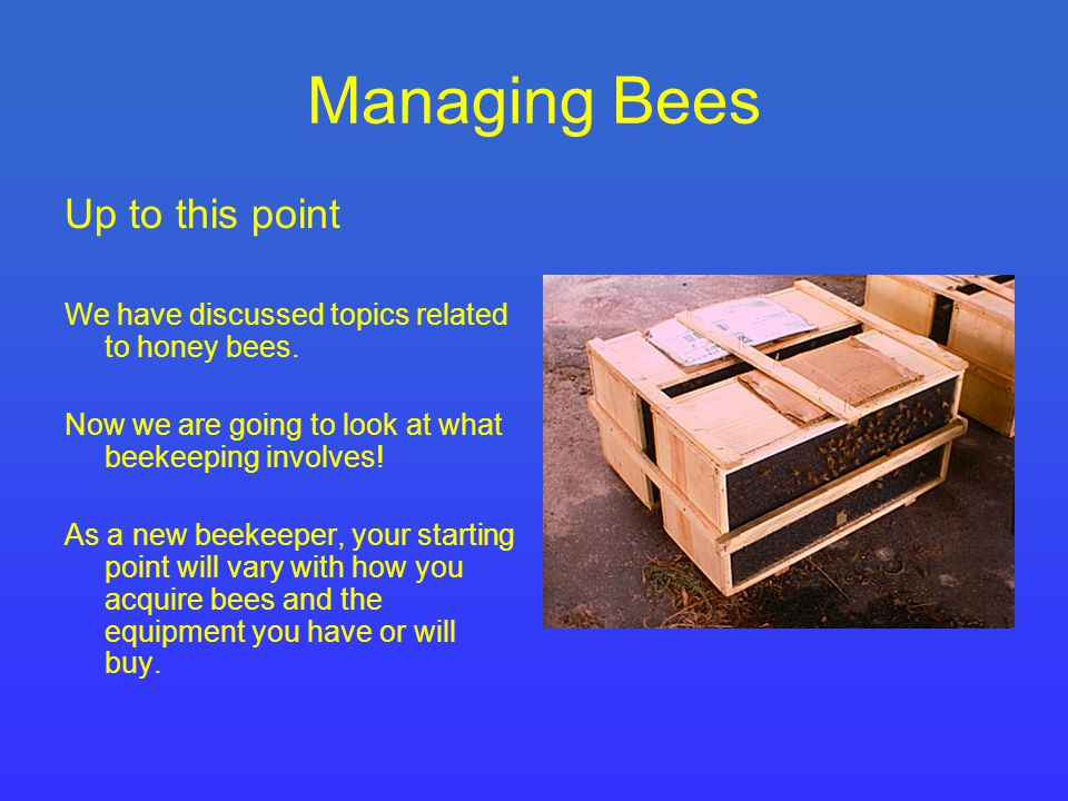 Starting with a swarm or a package of honey bees At some time or another, a beekeeper will install a swarm or a package of bees into a hive.