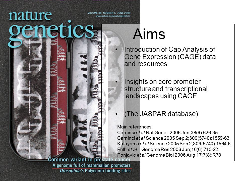 Aims Introduction of Cap Analysis of Gene Expression (CAGE) data and resources Insights on core promoter structure and transcriptional landscapes usin