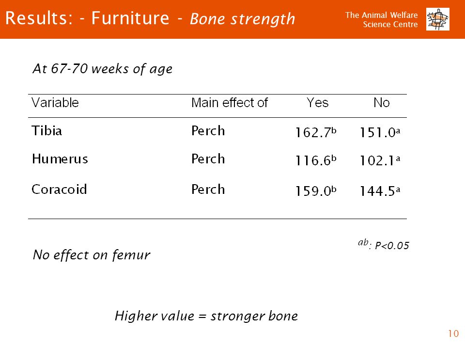 The Animal Welfare Science Centre 10 Results: - Furniture - Bone strength ab : P<0.05 At 67-70 weeks of age No effect on femur Higher value = stronger bone