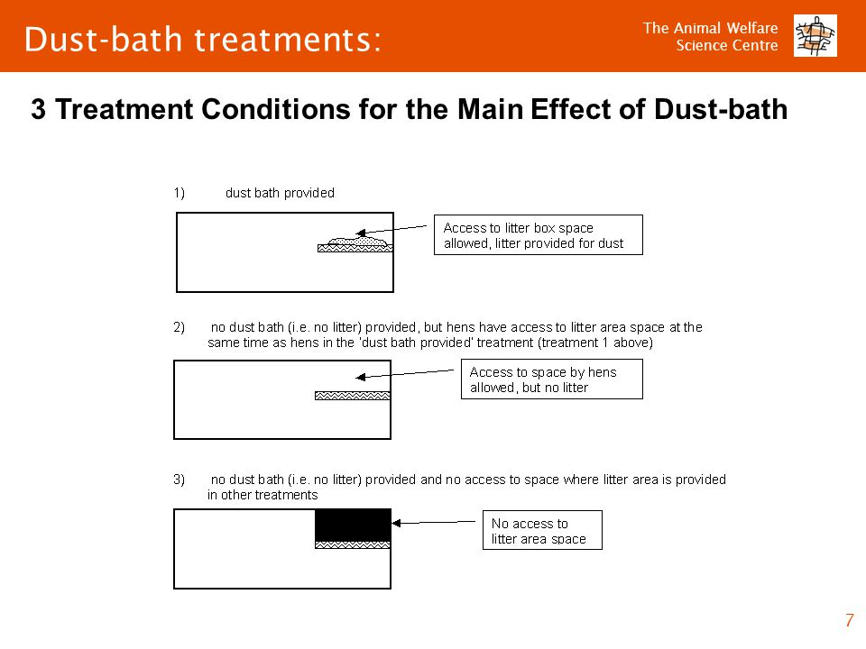 The Animal Welfare Science Centre 7 Dust-bath treatments: 3 Treatment Conditions for the Main Effect of Dust-bath