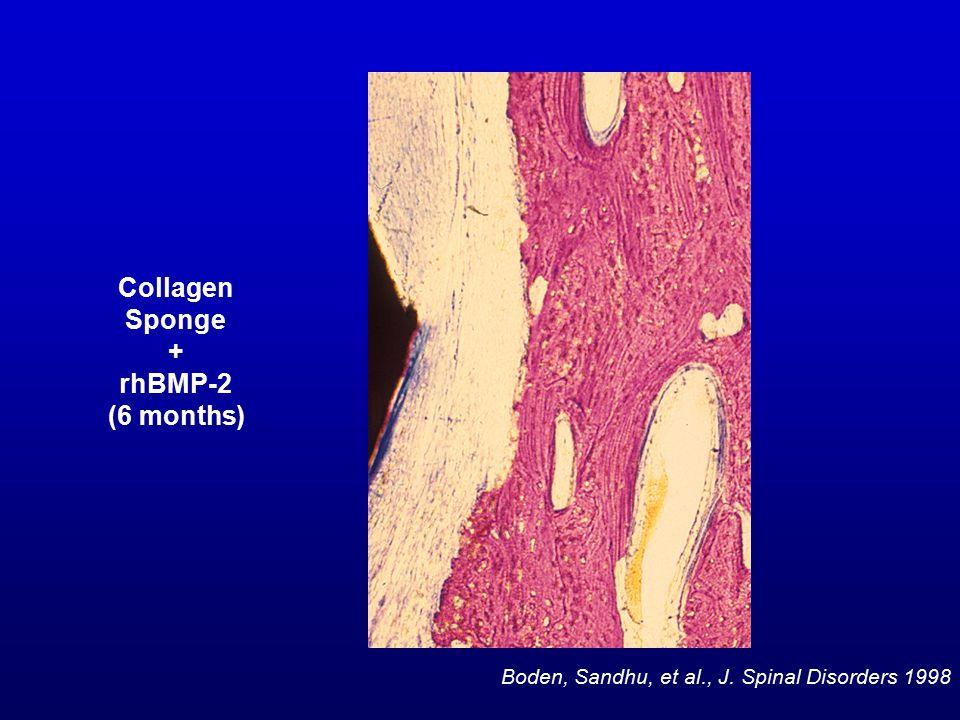 Collagen Sponge + rhBMP-2 (6 months) Boden, Sandhu, et al., J. Spinal Disorders 1998