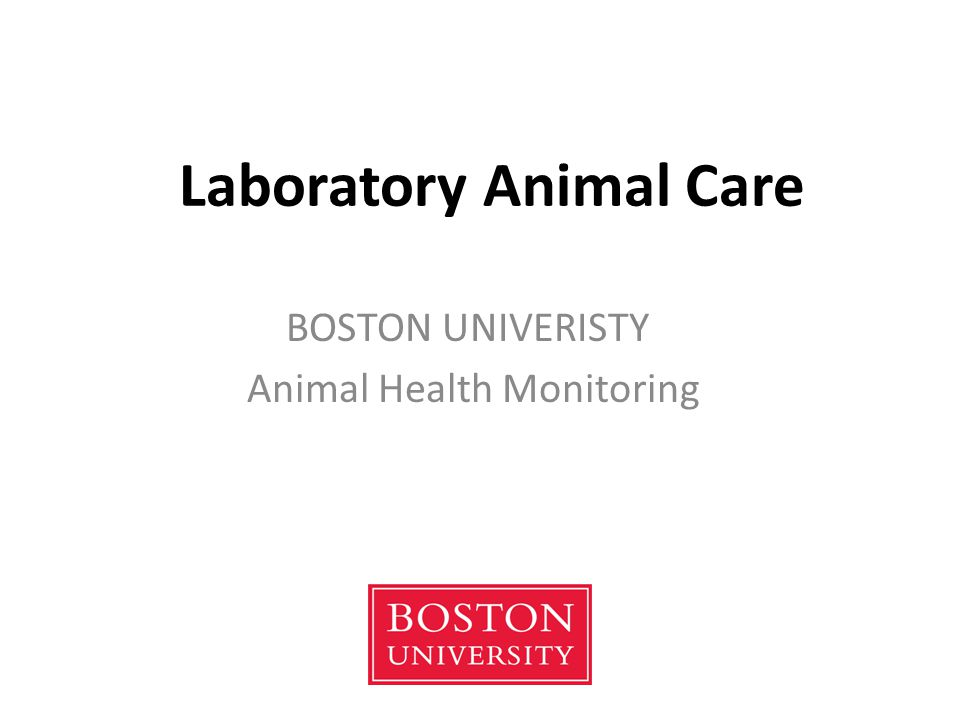 Laboratory Animal Care BOSTON UNIVERISTY Animal Health Monitoring