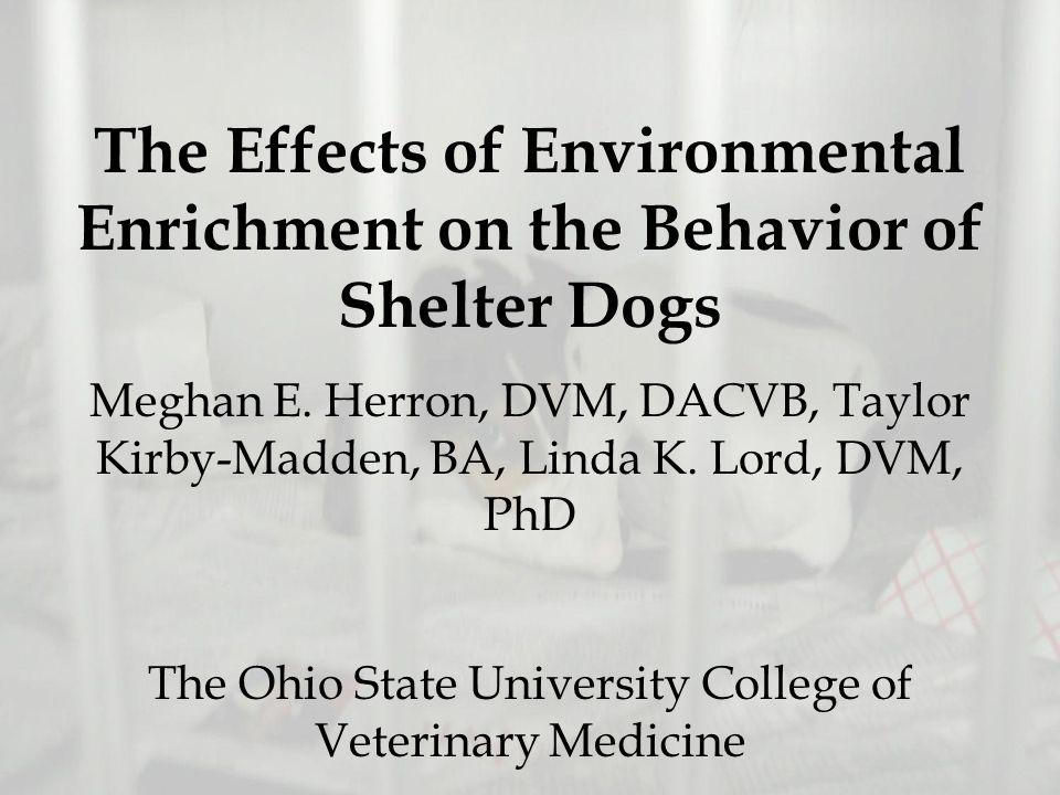 The Effects of Environmental Enrichment on the Behavior of Shelter Dogs Meghan E. Herron, DVM, DACVB, Taylor Kirby-Madden, BA, Linda K. Lord, DVM, PhD