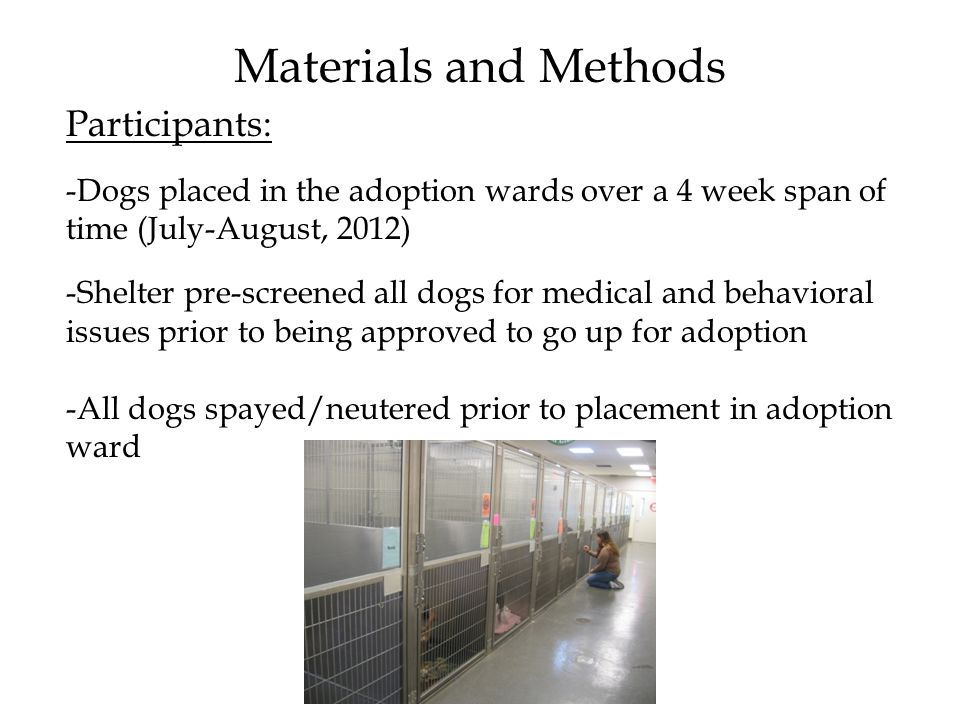 Materials and Methods Participants: -Dogs placed in the adoption wards over a 4 week span of time (July-August, 2012) -Shelter pre-screened all dogs for medical and behavioral issues prior to being approved to go up for adoption -All dogs spayed/neutered prior to placement in adoption ward