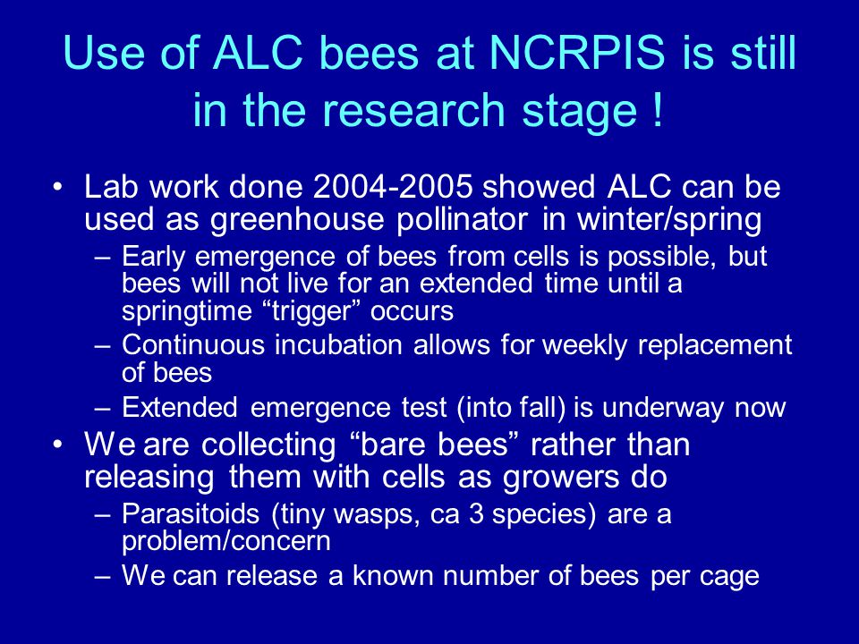 Use of ALC bees at NCRPIS is still in the research stage ! Lab work done 2004-2005 showed ALC can be used as greenhouse pollinator in winter/spring –E