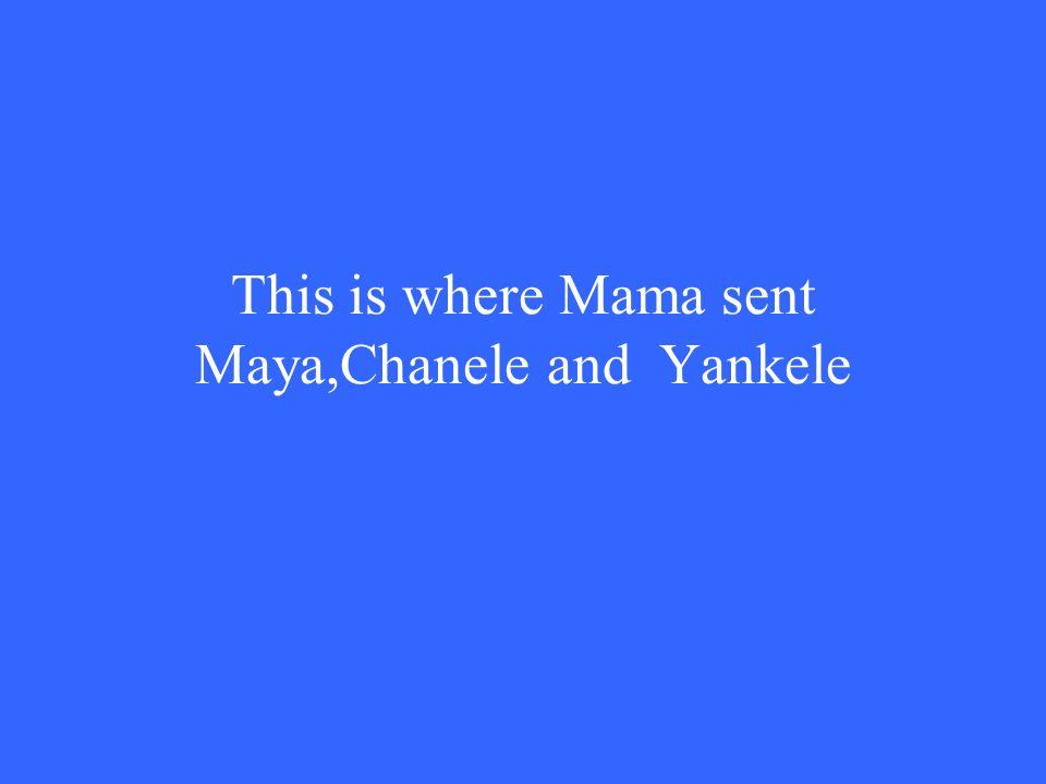 This is where Mama sent Maya,Chanele and Yankele