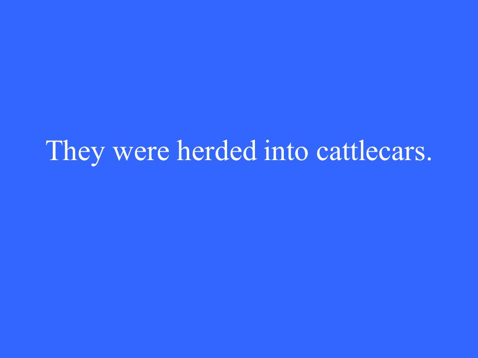 They were herded into cattlecars.