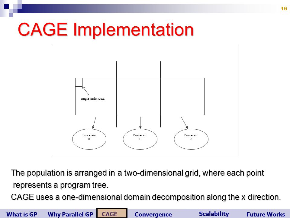 What is GP Scalability Convergence CAGE Future WorksWhy Parallel GP 16 CAGE Implementation Processor 0 Processor 1 Processor 2 single individual The population is arranged in a two-dimensional grid, where each point represents a program tree.