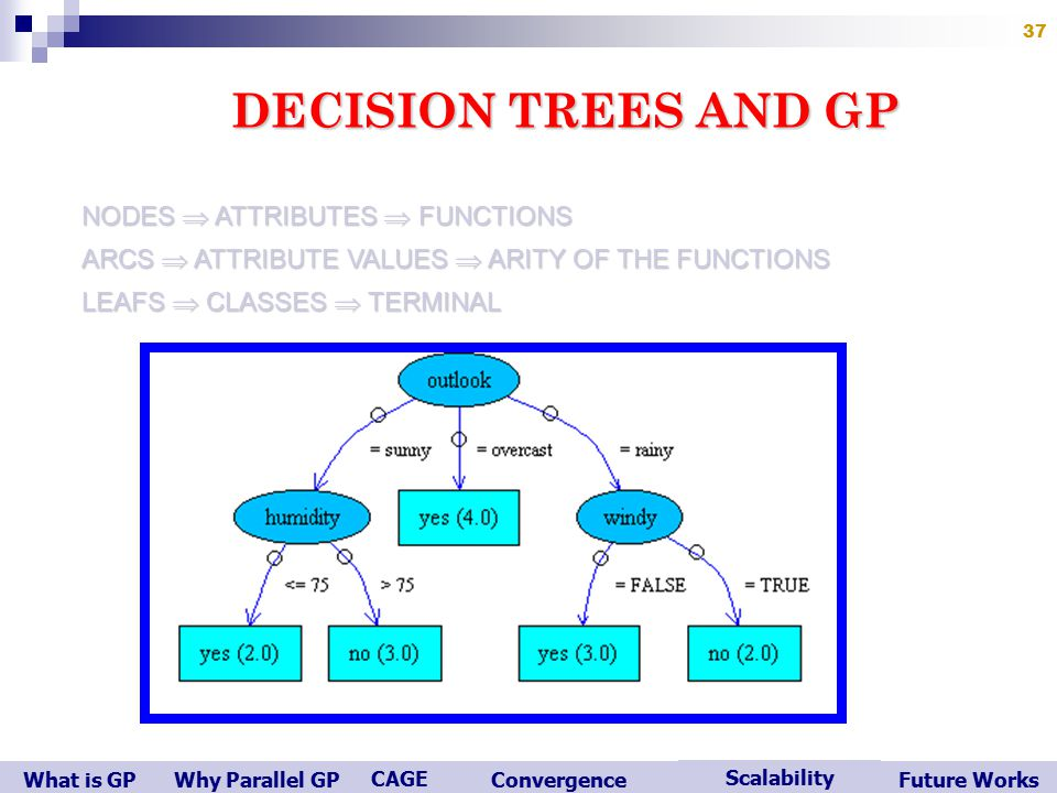 What is GP Scalability Convergence CAGE Future WorksWhy Parallel GP 37 DECISION TREES AND GP NODES  ATTRIBUTES  FUNCTIONS ARCS  ATTRIBUTE VALUES  ARITY OF THE FUNCTIONS LEAFS  CLASSES  TERMINAL