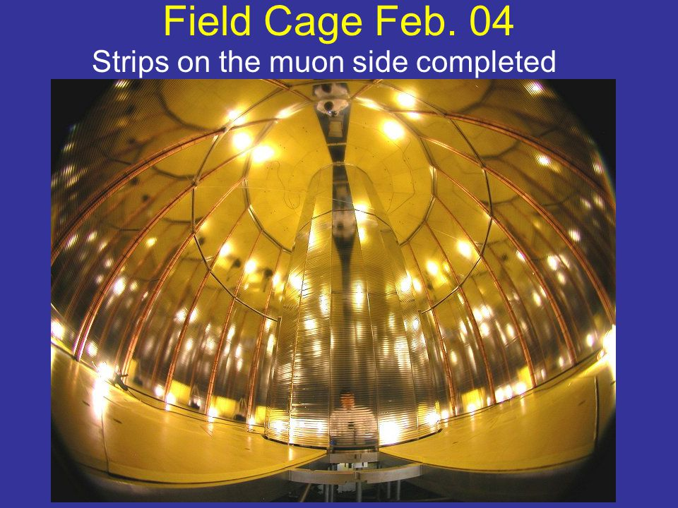 Field Cage Feb. 04 Strips on the muon side completed