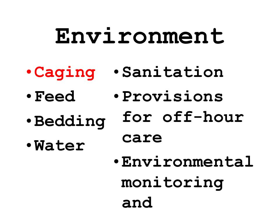 Environment Caging Feed Bedding Water Sanitation Provisions for off-hour care Environmental monitoring and maintenance