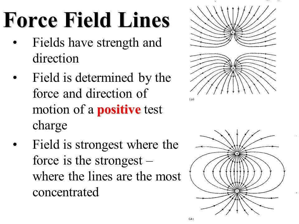 Force Field Lines Fields have strength and direction positiveField is determined by the force and direction of motion of a positive test charge Field is strongest where the force is the strongest – where the lines are the most concentrated