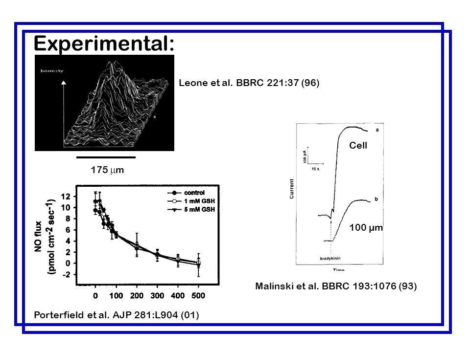 Leone et al. BBRC 221:37 (96) Porterfield et al. AJP 281:L904 (01) Malinski et al. BBRC 193:1076 (93) 175  m Experimental: Cell 100 µm