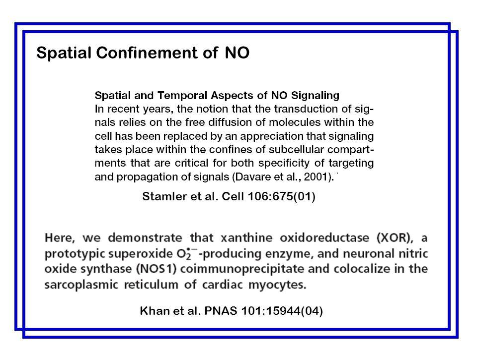 Khan et al. PNAS 101:15944(04) Stamler et al. Cell 106:675(01) Spatial Confinement of NO
