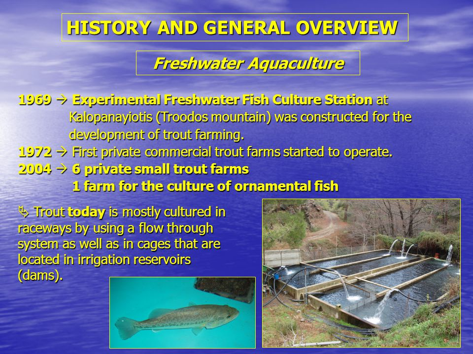 HISTORY AND GENERAL OVERVIEW 1969  Experimental Freshwater Fish Culture Station at Kalopanayiotis (Troodos mountain) was constructed for the development of trout farming.