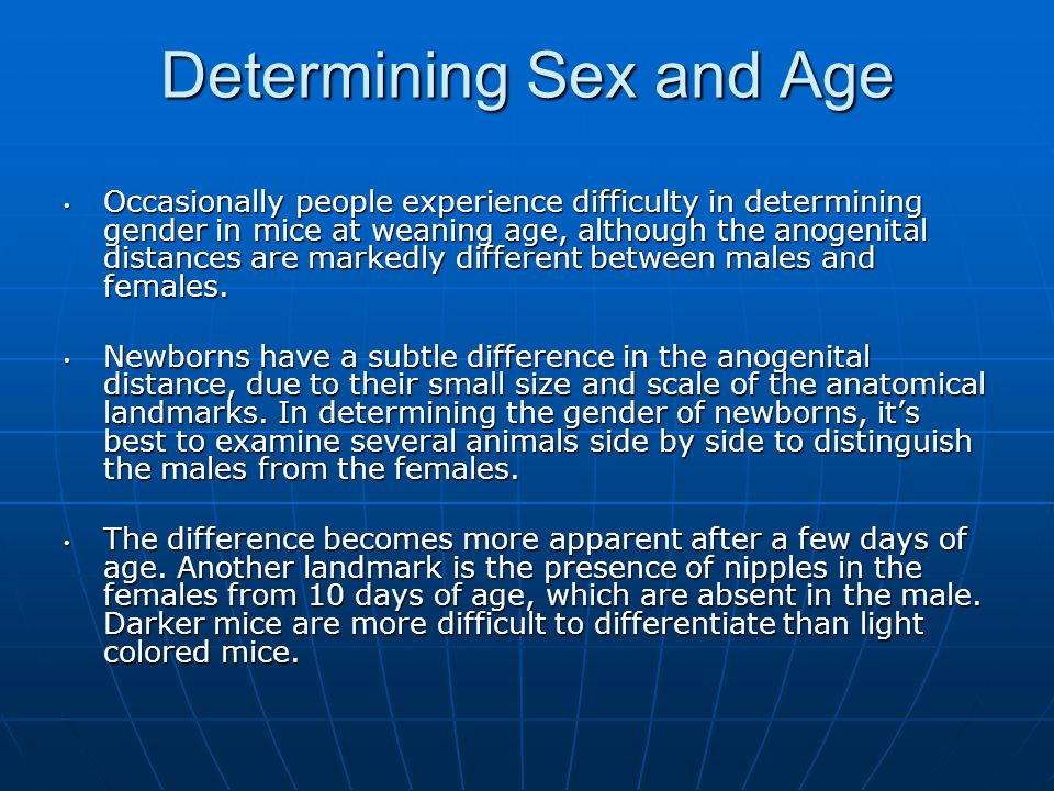 Determining Sex and Age Occasionally people experience difficulty in determining gender in mice at weaning age, although the anogenital distances are