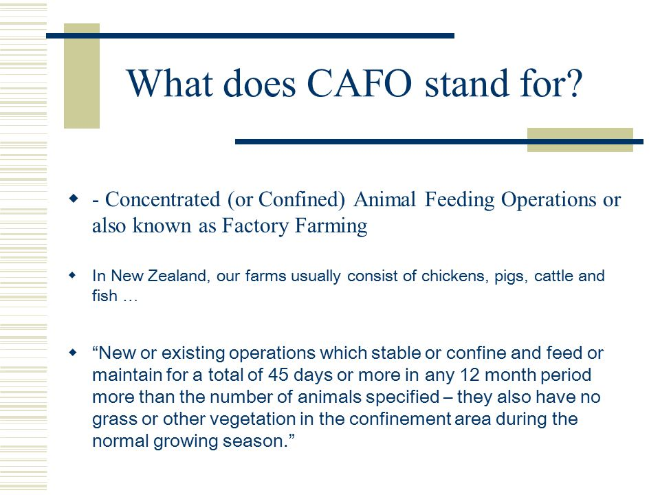 What does CAFO stand for.