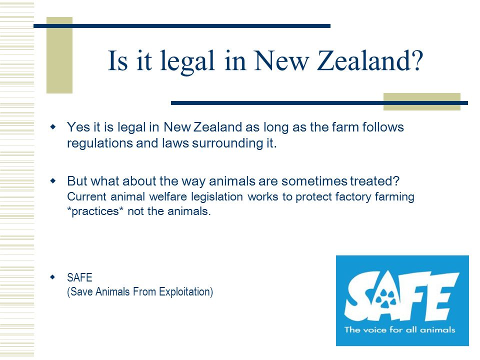 Is it legal in New Zealand?  Yes it is legal in New Zealand as long as the farm follows regulations and laws surrounding it.  But what about the way