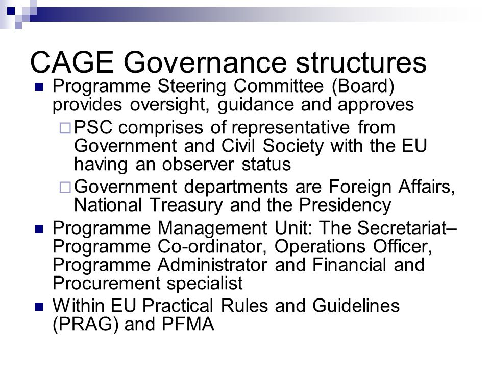 CAGE Governance structures Programme Steering Committee (Board) provides oversight, guidance and approves  PSC comprises of representative from Government and Civil Society with the EU having an observer status  Government departments are Foreign Affairs, National Treasury and the Presidency Programme Management Unit: The Secretariat– Programme Co-ordinator, Operations Officer, Programme Administrator and Financial and Procurement specialist Within EU Practical Rules and Guidelines (PRAG) and PFMA