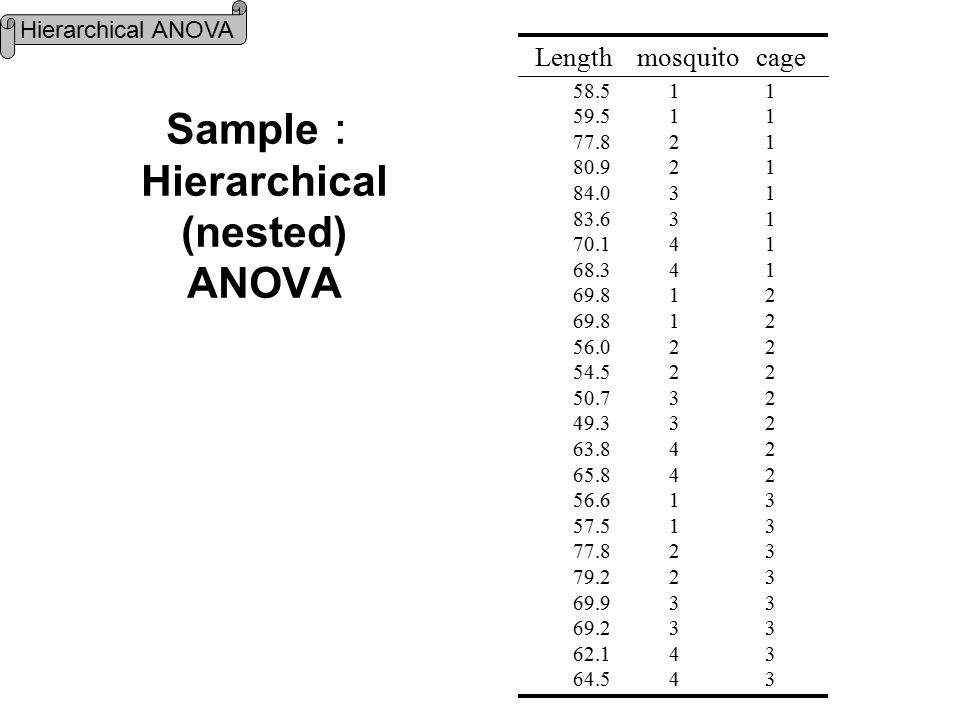 Sample : Hierarchical (nested) ANOVA 58.5 1 1 59.5 1 1 77.8 2 1 80.9 2 1 84.0 3 1 83.6 3 1 70.1 4 1 68.3 4 1 69.8 1 2 56.0 2 2 54.5 2 2 50.7 3 2 49.3 3 2 63.8 4 2 65.84 2 56.6 1 3 57.5 1 3 77.8 2 3 79.2 2 3 69.9 3 3 69.2 3 3 62.1 4 3 64.5 4 3 Length mosquito cage Hierarchical ANOVA