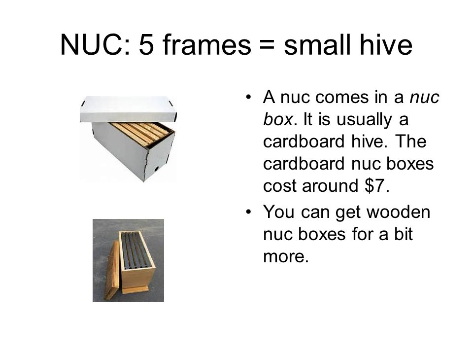 NUC: 5 frames = small hive A nuc comes in a nuc box.