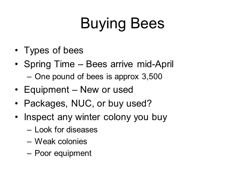 Buying Bees Types of bees Spring Time – Bees arrive mid-April –One pound of bees is approx 3,500 Equipment – New or used Packages, NUC, or buy used.