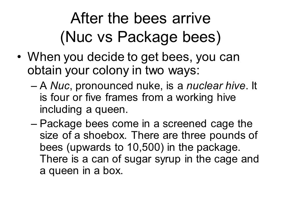To Hive Bees continued After 3-7 days open the front of your hive, allowing a 1.5 inch opening Remove top cover and inner covers Inspect the hive, you should be ready to remove the package box, syrup can and queen cage…..