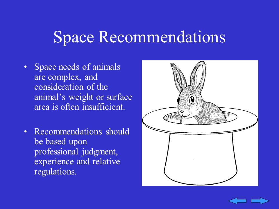 Space Recommendations Space needs of animals are complex, and consideration of the animal's weight or surface area is often insufficient.