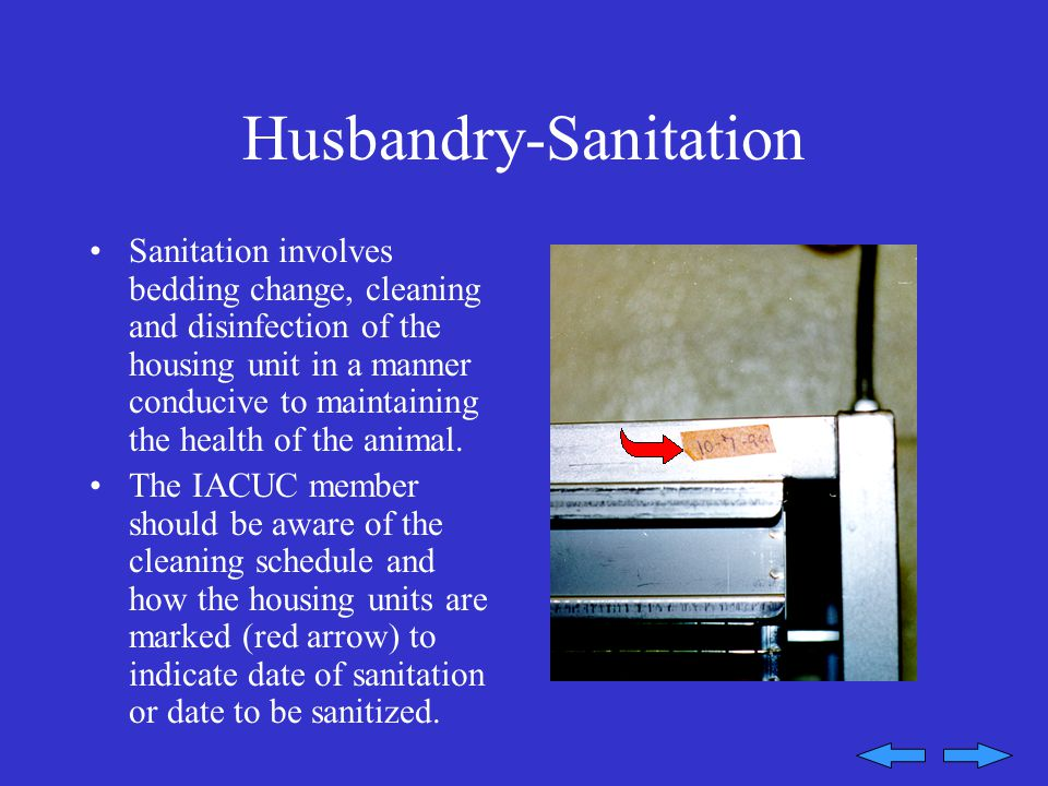 Husbandry-Sanitation Sanitation involves bedding change, cleaning and disinfection of the housing unit in a manner conducive to maintaining the health of the animal.